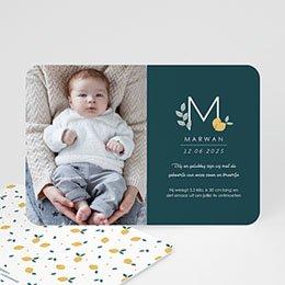 Aankondiging Geboorte Precious Lemon