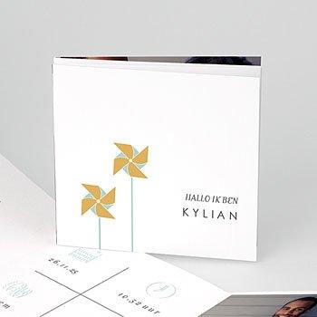 Geboortekaartje jongen - Gouden Windmolentjes - 0