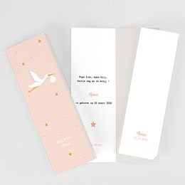 Aankondiging Geboorte Roze Ooievaar