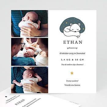 Geboortekaartjes met foto - Cute Fox - 0