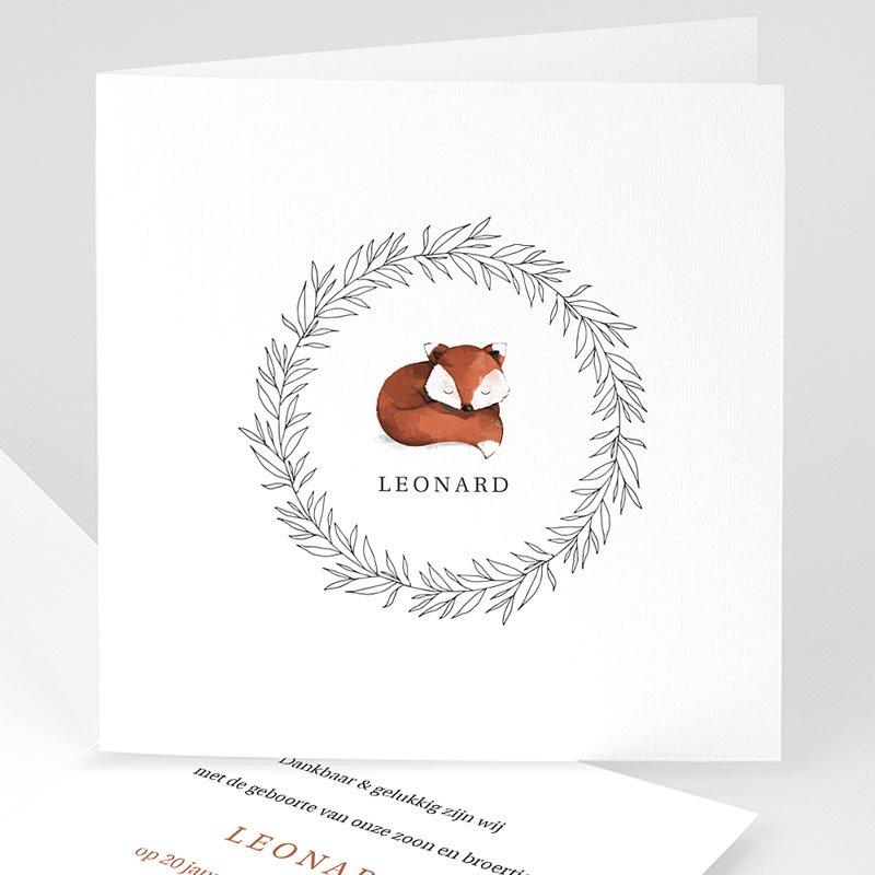 Geboortekaartjes Foxy