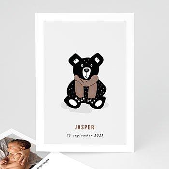 Geboortekaartjes Dieren - Teddybeer - 0