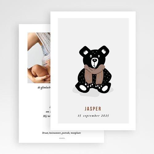 Geboortekaartjes Dieren Teddybeer gratuit