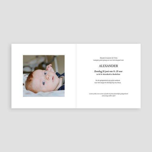 Uitnodiging doopsel jongen of meisje - Heilige Takken 73183 thumb