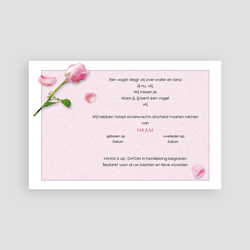 Universele Bedankkaartjes Overlijden Roos en rozenblaadjes pas cher