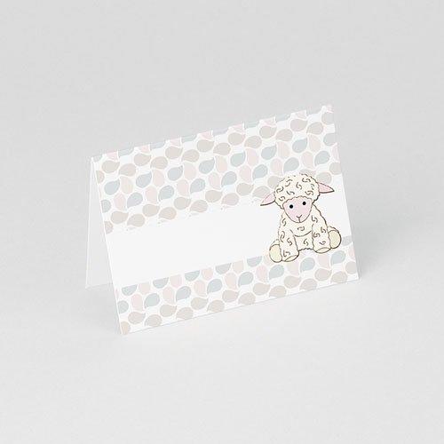 Plaatskaartjes doopviering - Doopsel 2128 75823 thumb