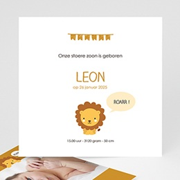 Geboortekaartje jongen Le roi de la jungle