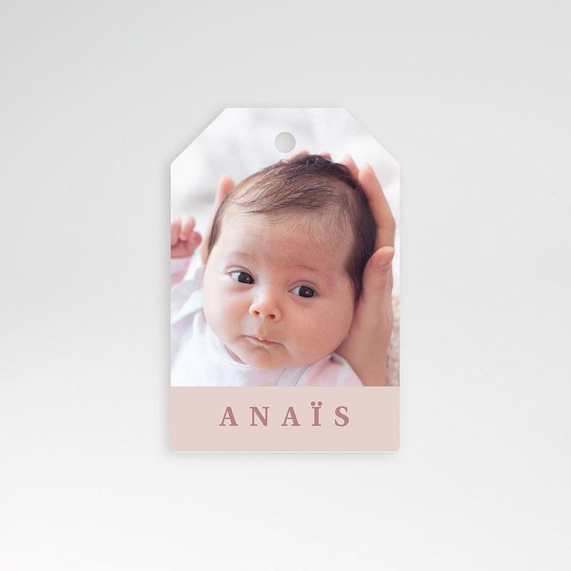 Geschenk Etiket Geboorte Muisjeshagel Meisje