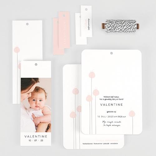 Geboortekaartjes Meisje Rozenknoppen, 3 etiketten, 1 foto gratuit