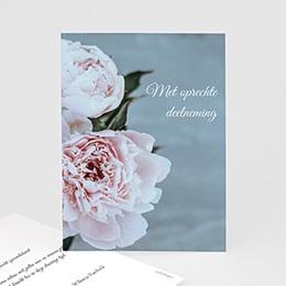 Condoleancekaarten - Pioenrozen, 10 cm x 14 cm - 0