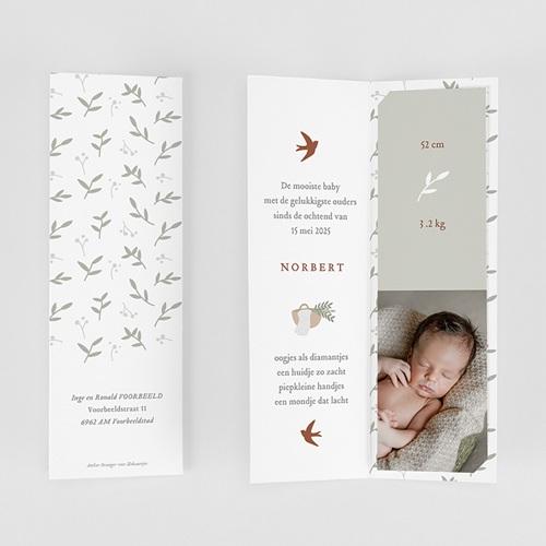 Geboortekaartjes Jongen Geluksvogel, zachtgroen gratuit