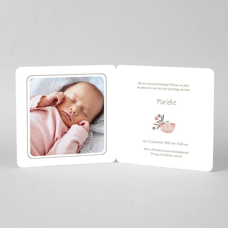 Geboortekaartjes Meisje Geluksmandje met knuffel pas cher