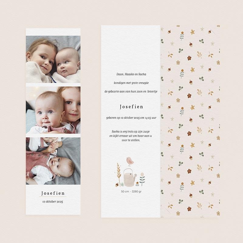 Geboortekaartjes met Bladwijzers Kleine herfstgans gratuit