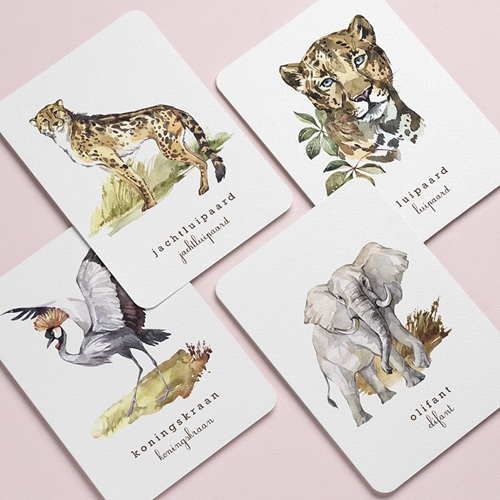 Stationery Afrikaanse wildernis pas cher