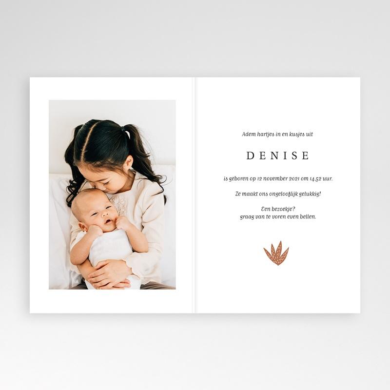 Geboortekaartjes met Dieren Kleine Winterbeer, Aloë Vera, dubbele kaart pas cher