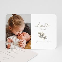 Geboortekaartjes - Hallo goudtakje - 0