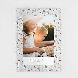 Fotoboek De kleine prins - De kleine Prins in de tropen, 21 x 29,7 cm - 0