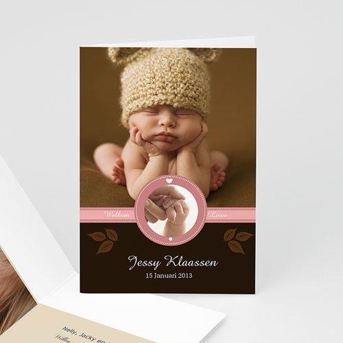 Geboortekaartje meisje - Hazelnootje 9969 thumb