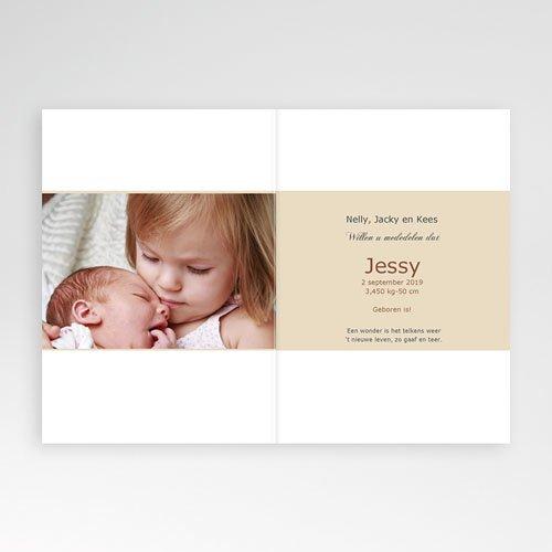 Geboortekaartje meisje - Hazelnootje 9970 thumb