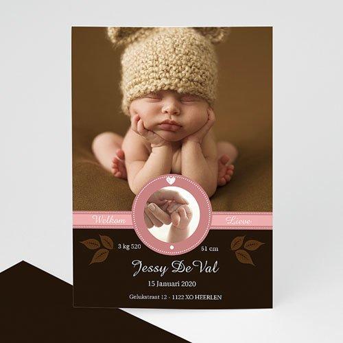 Geboortekaartje meisje - Hazelnootje 9985 thumb