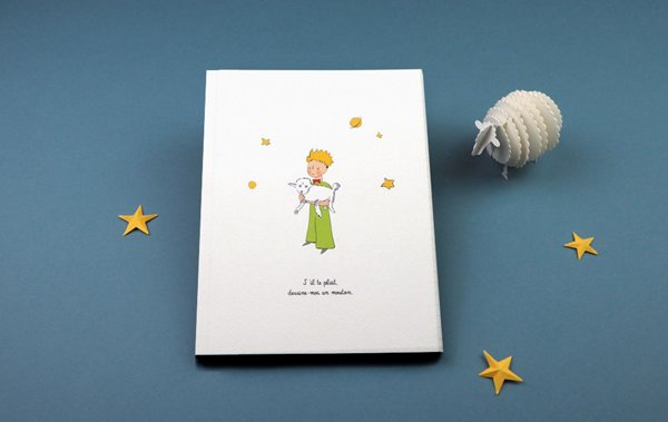 Kinderboek De kleine prins